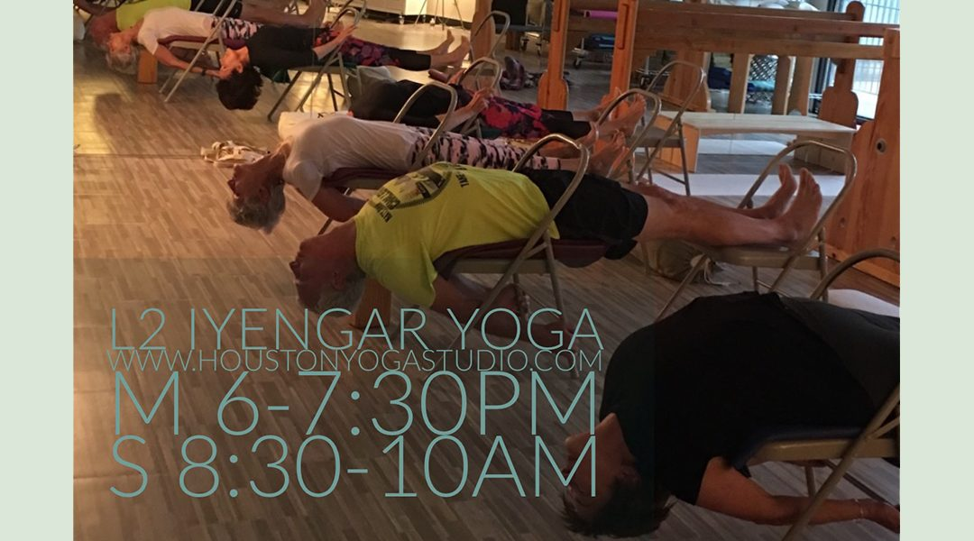 Level 2 Iyengar Yoga Houston